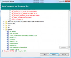 100 files were decrypted