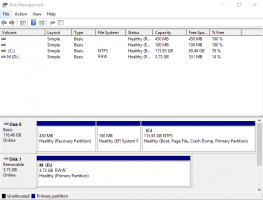 RAW Partition before recovery.